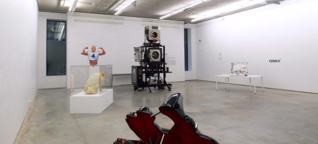 Открытие выставки Вима Дельвуа