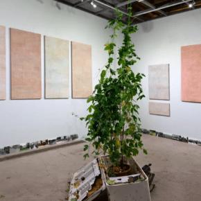 Открытие выставки «Против зерна»